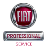 Fiat Professional Industriegarage AG